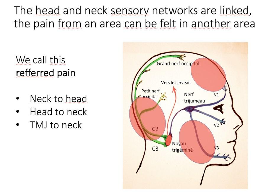Neck and headache